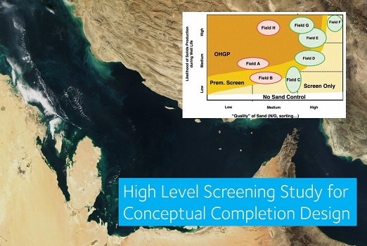 High Level Screening Study for Conceptual Completion Design